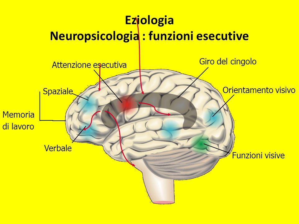 Eziologia Neuropsicologia : funzioni esecutive