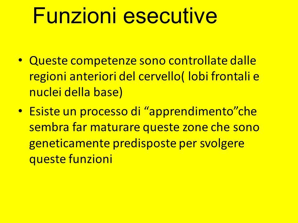 Funzioni esecutive Queste competenze sono controllate dalle regioni anteriori del cervello( lobi frontali e nuclei della base)