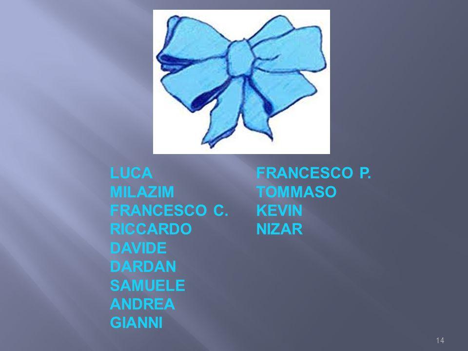 LUCA FRANCESCO P. MILAZIM. TOMMASO. FRANCESCO C. KEVIN. RICCARDO. NIZAR. DAVIDE. DARDAN. SAMUELE.