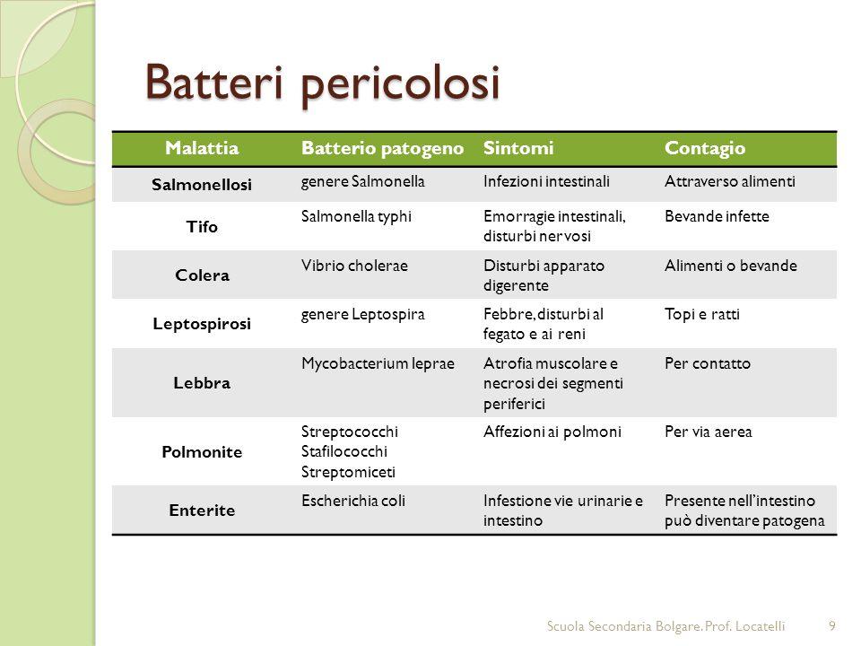 Batteri pericolosi Alcuni batteri possono causare gravi malattie