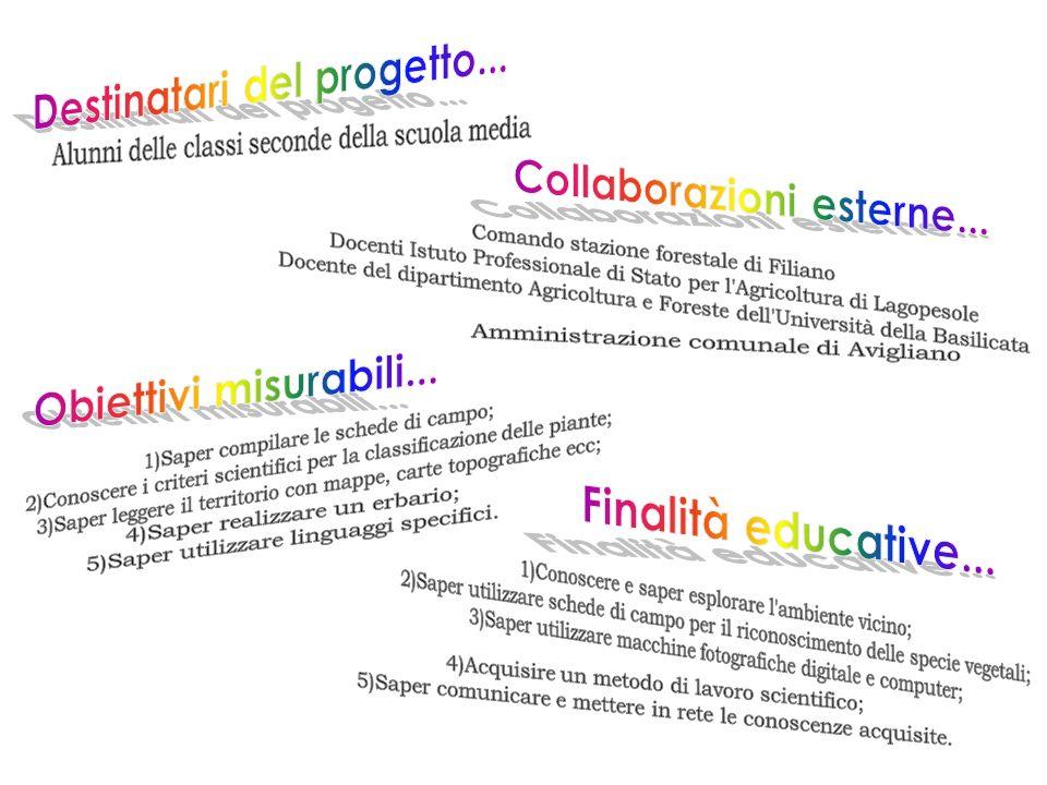 Destinatari del progetto... Collaborazioni esterne...