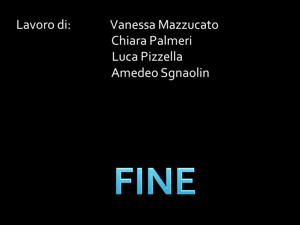 Lavoro di: Vanessa Mazzucato Chiara Palmeri Luca Pizzella Amedeo Sgnaolin