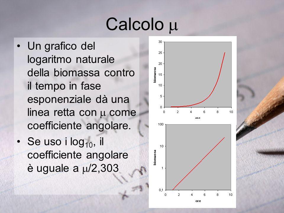 Calcolo mUn grafico del logaritmo naturale della biomassa contro il tempo in fase esponenziale dà una linea retta con m come coefficiente angolare.
