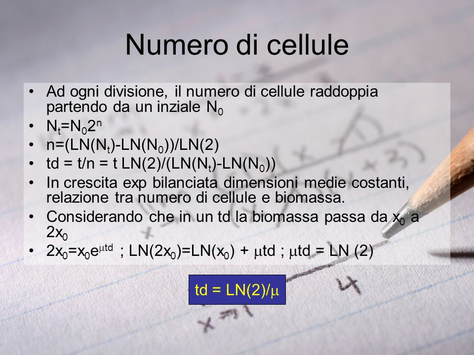 Numero di celluleAd ogni divisione, il numero di cellule raddoppia partendo da un inziale N0. Nt=N02n.