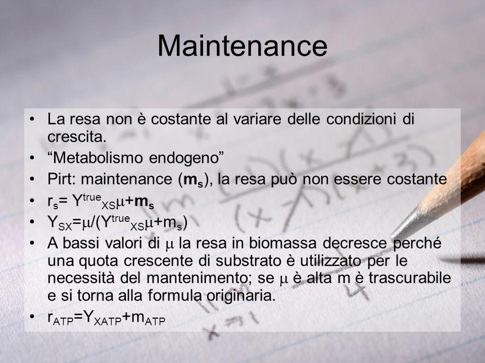 Maintenance La resa non è costante al variare delle condizioni di crescita. Metabolismo endogeno
