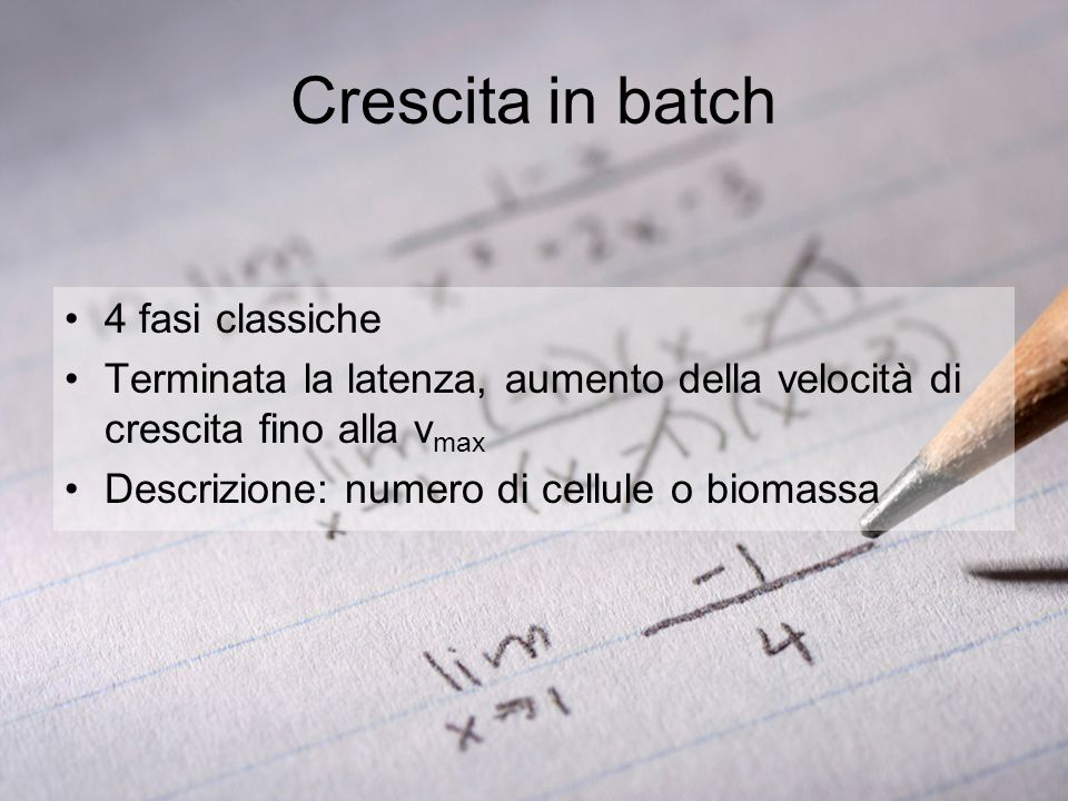 Crescita in batch 4 fasi classiche