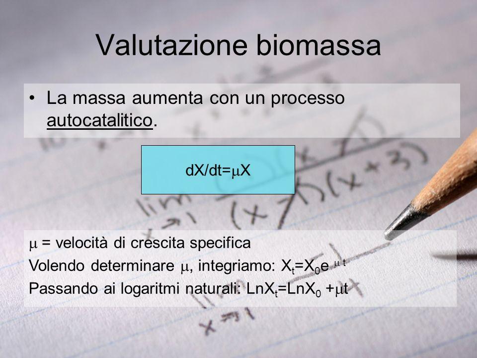 Valutazione biomassa La massa aumenta con un processo autocatalitico.