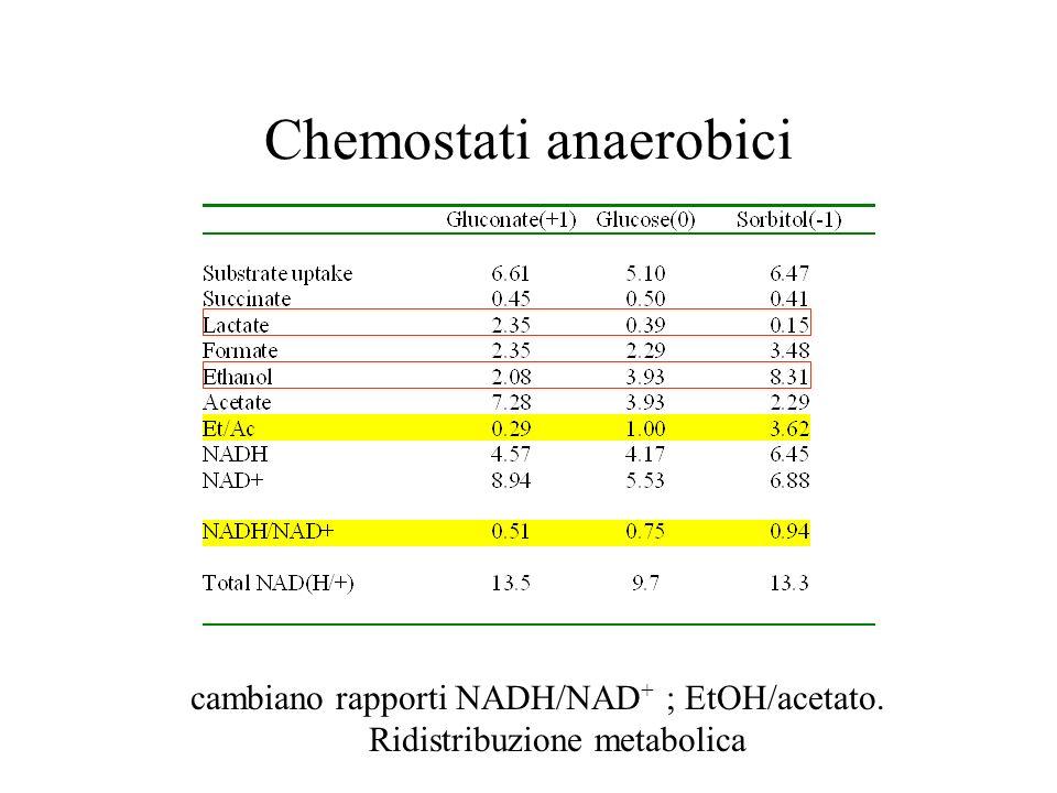 Chemostati anaerobici