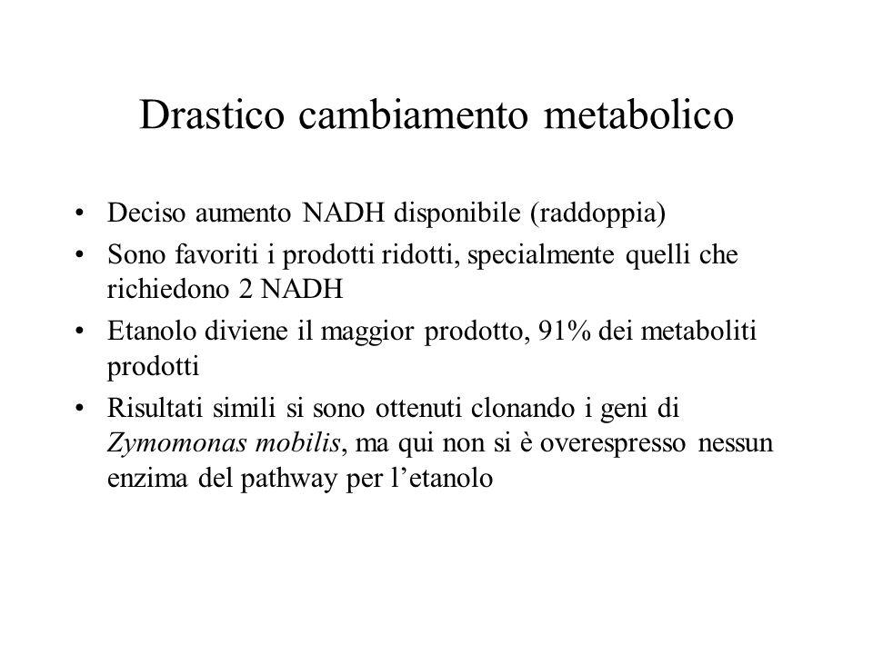 Drastico cambiamento metabolico