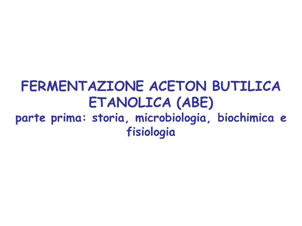 FERMENTAZIONE ACETON BUTILICA ETANOLICA (ABE) parte prima: storia, microbiologia, biochimica e fisiologia