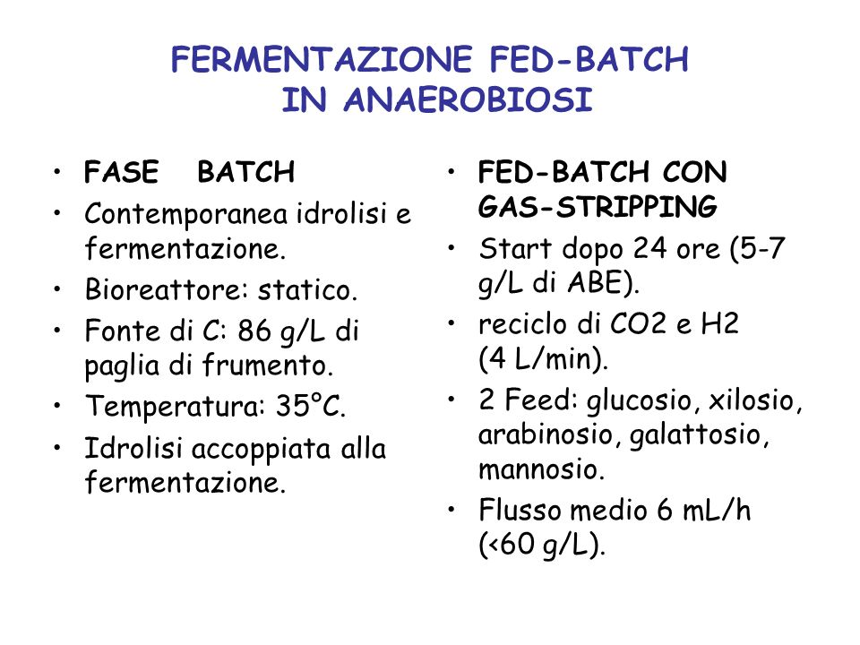FERMENTAZIONE FED-BATCH IN ANAEROBIOSI