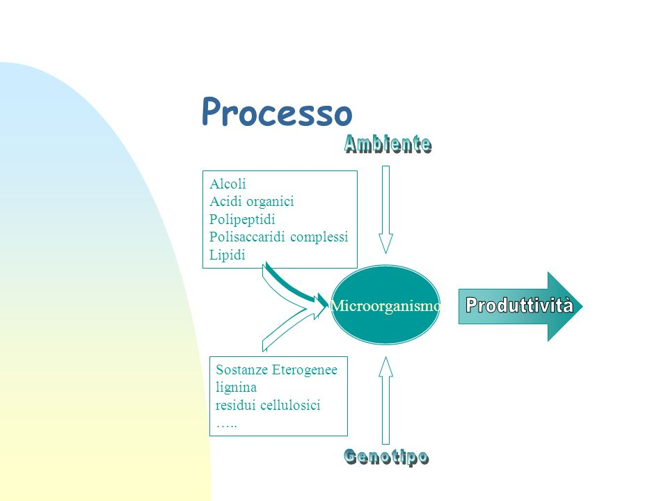 Processo Ambiente Produttività Genotipo Microorganismo Alcoli