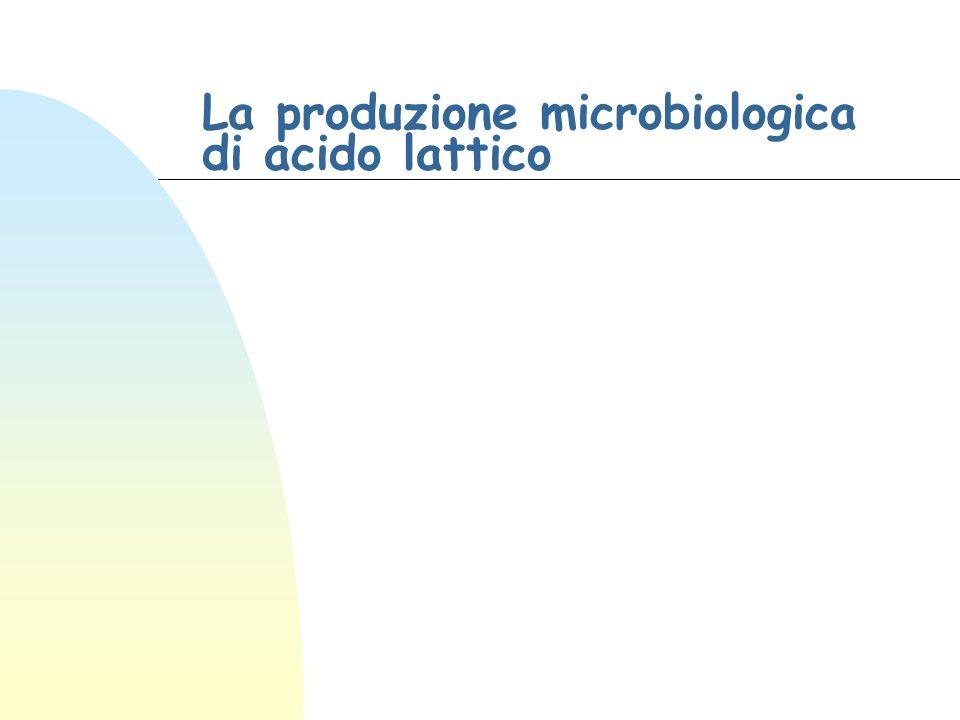La produzione microbiologica di acido lattico