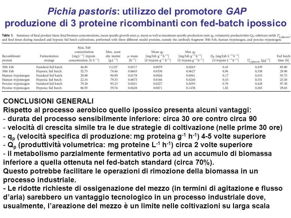 Pichia pastoris: utilizzo del promotore GAP