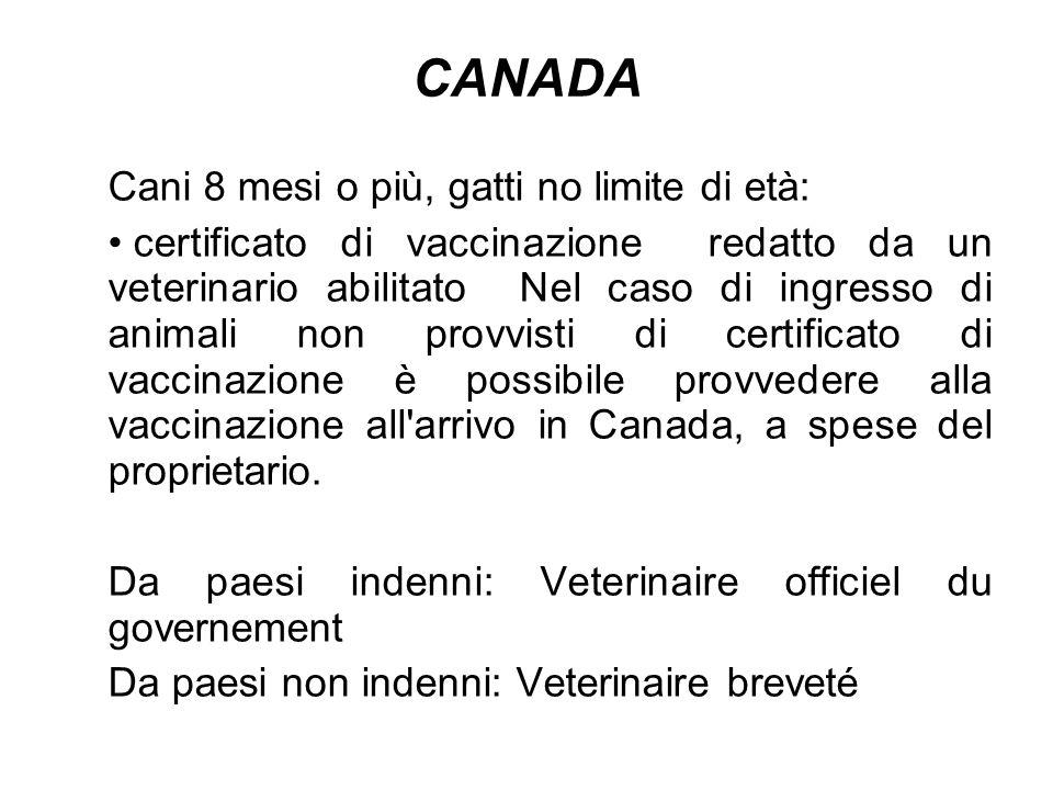 CANADA Cani 8 mesi o più, gatti no limite di età: