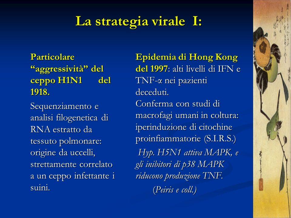 La strategia virale I: Particolare aggressività del ceppo H1N1 del 1918.