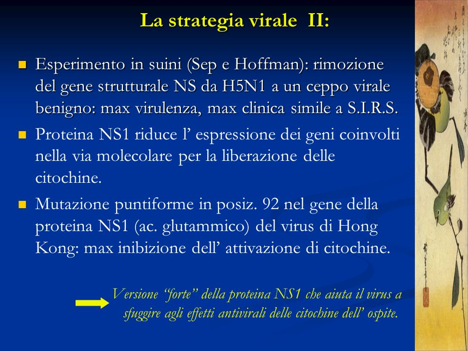 La strategia virale II: