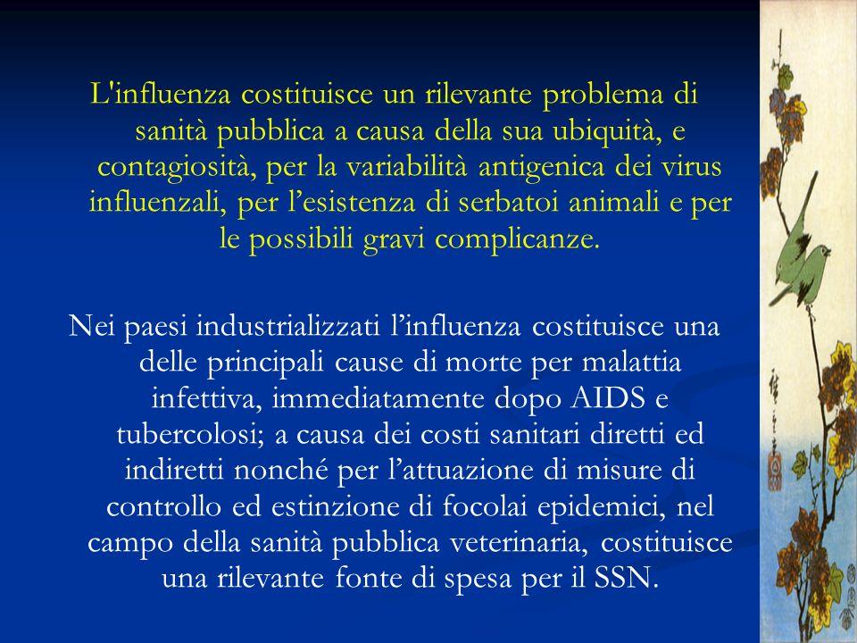 L influenza costituisce un rilevante problema di sanità pubblica a causa della sua ubiquità, e contagiosità, per la variabilità antigenica dei virus influenzali, per l'esistenza di serbatoi animali e per le possibili gravi complicanze.
