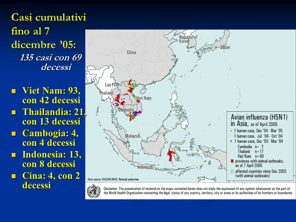 Casi cumulativi fino al 7 dicembre '05: 135 casi con 69 decessi