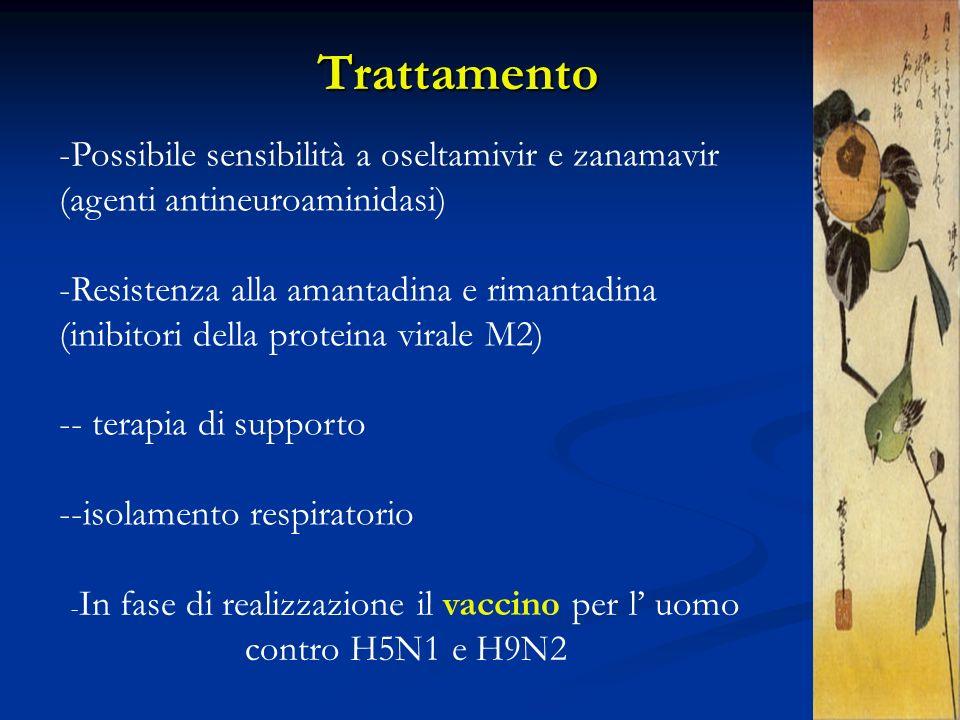 -In fase di realizzazione il vaccino per l' uomo contro H5N1 e H9N2