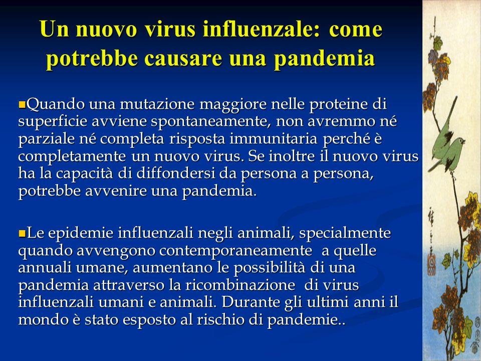 Un nuovo virus influenzale: come potrebbe causare una pandemia