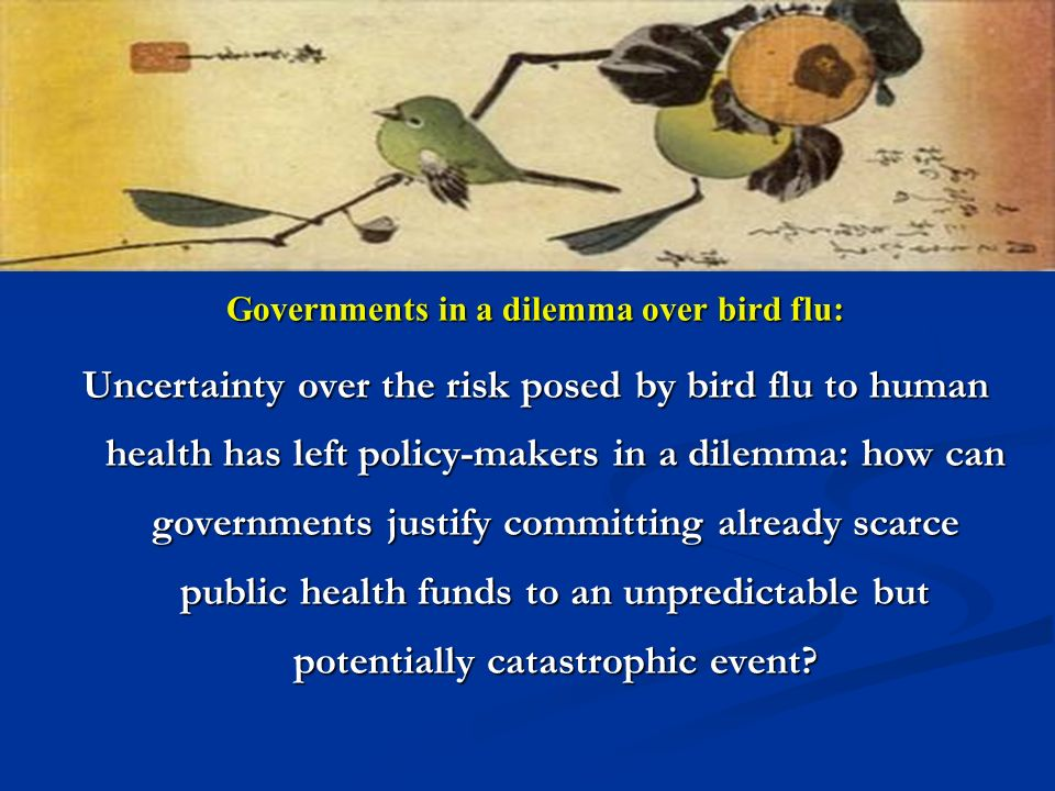 Governments in a dilemma over bird flu: