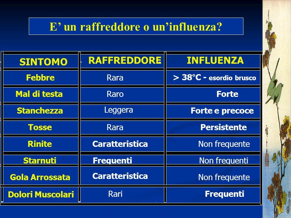 E' un raffreddore o un'influenza > 38°C - esordio brusco