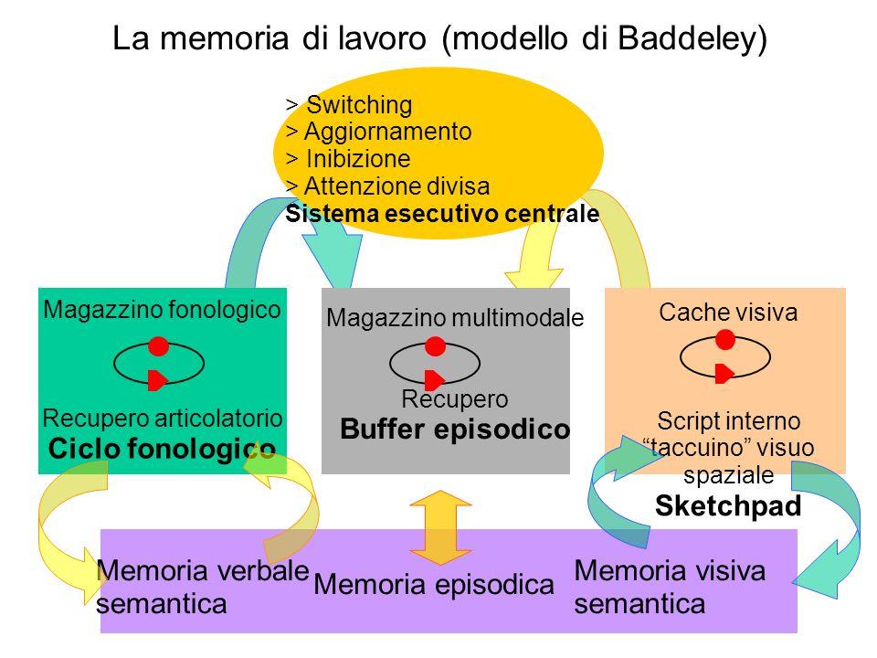 La memoria di lavoro (modello di Baddeley)