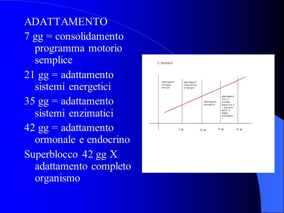 ADATTAMENTO 7 gg = consolidamento programma motorio semplice. 21 gg = adattamento sistemi energetici.