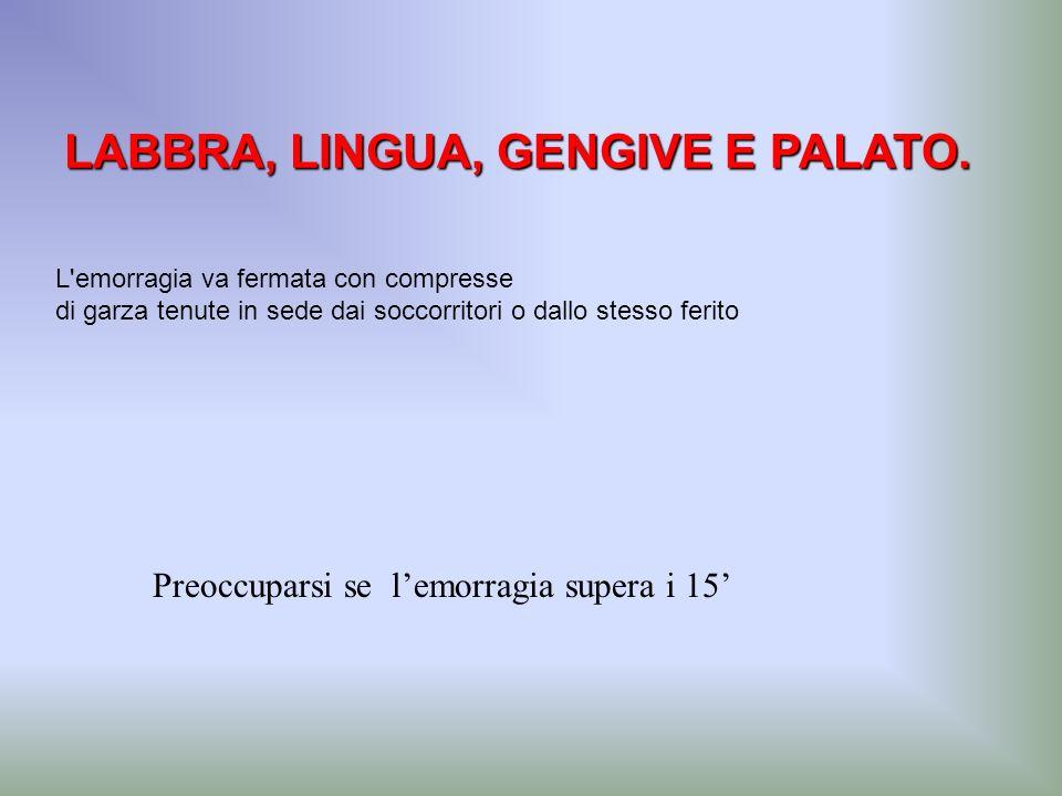 LABBRA, LINGUA, GENGIVE E PALATO.