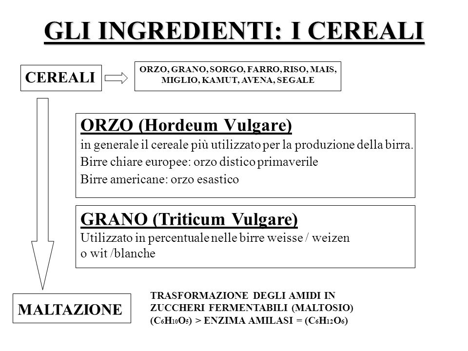 GLI INGREDIENTI: I CEREALI