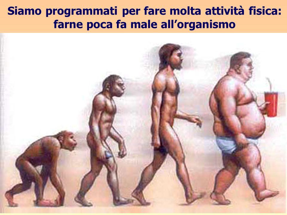 Siamo programmati per fare molta attività fisica: farne poca fa male all'organismo