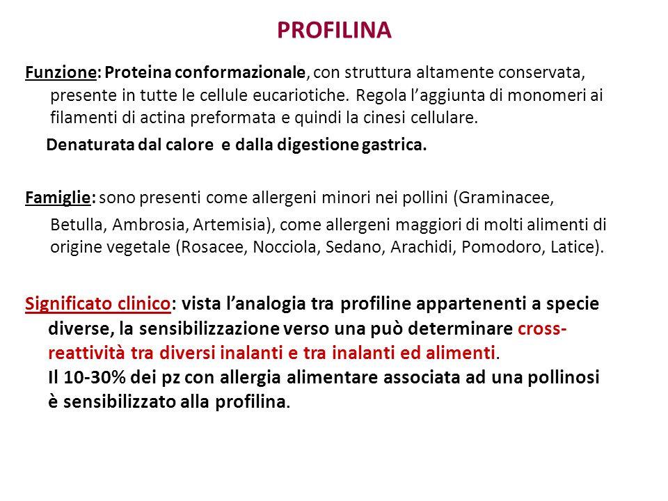 PROFILINA