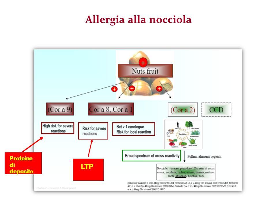 Allergia alla nocciola