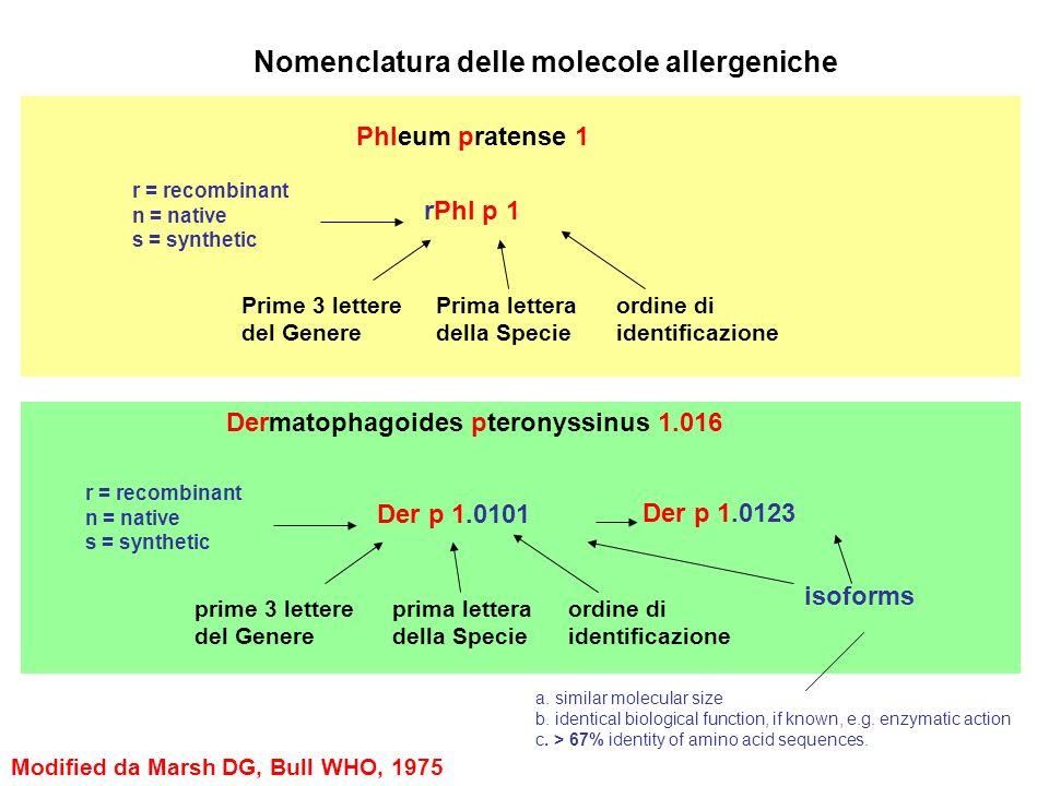 Nomenclatura delle molecole allergeniche