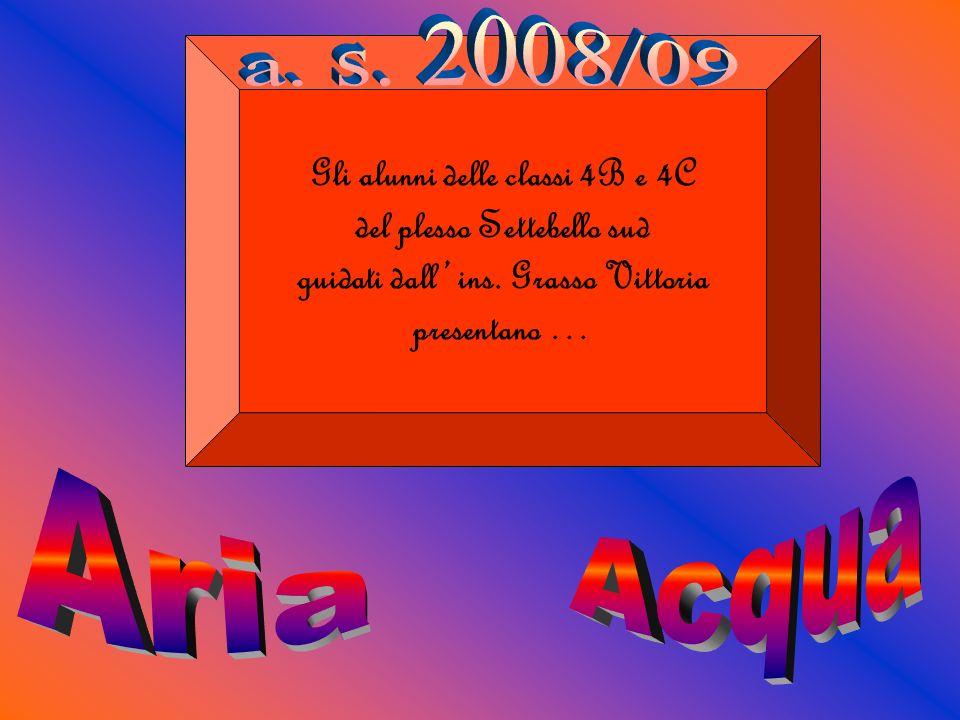 a. s. 2008/09 Acqua Aria Gli alunni delle classi 4B e 4C