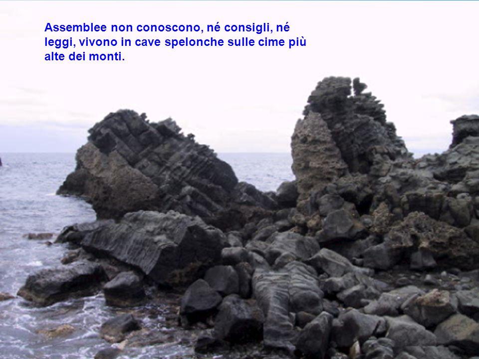 Assemblee non conoscono, né consigli, né leggi, vivono in cave spelonche sulle cime più alte dei monti.