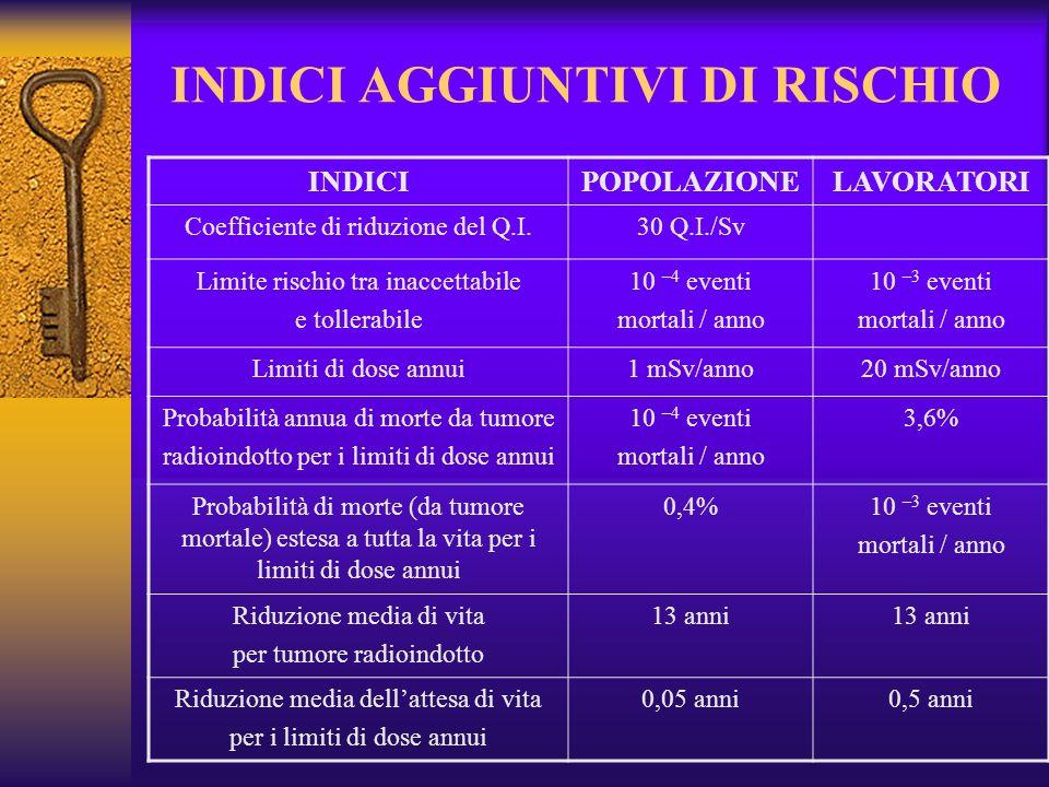 INDICI AGGIUNTIVI DI RISCHIO