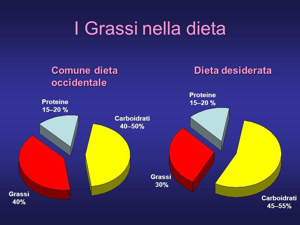 I Grassi nella dieta Comune dieta occidentale Dieta desiderata