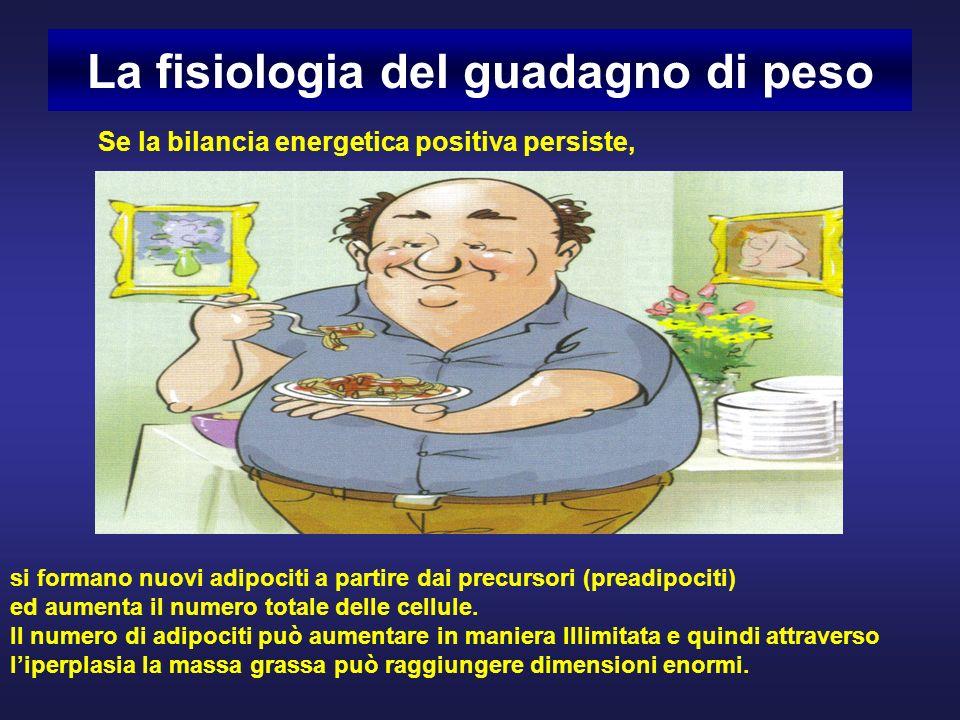 La fisiologia del guadagno di peso