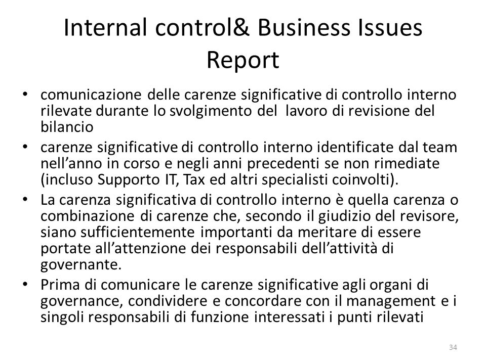 Internal control& Business Issues Report