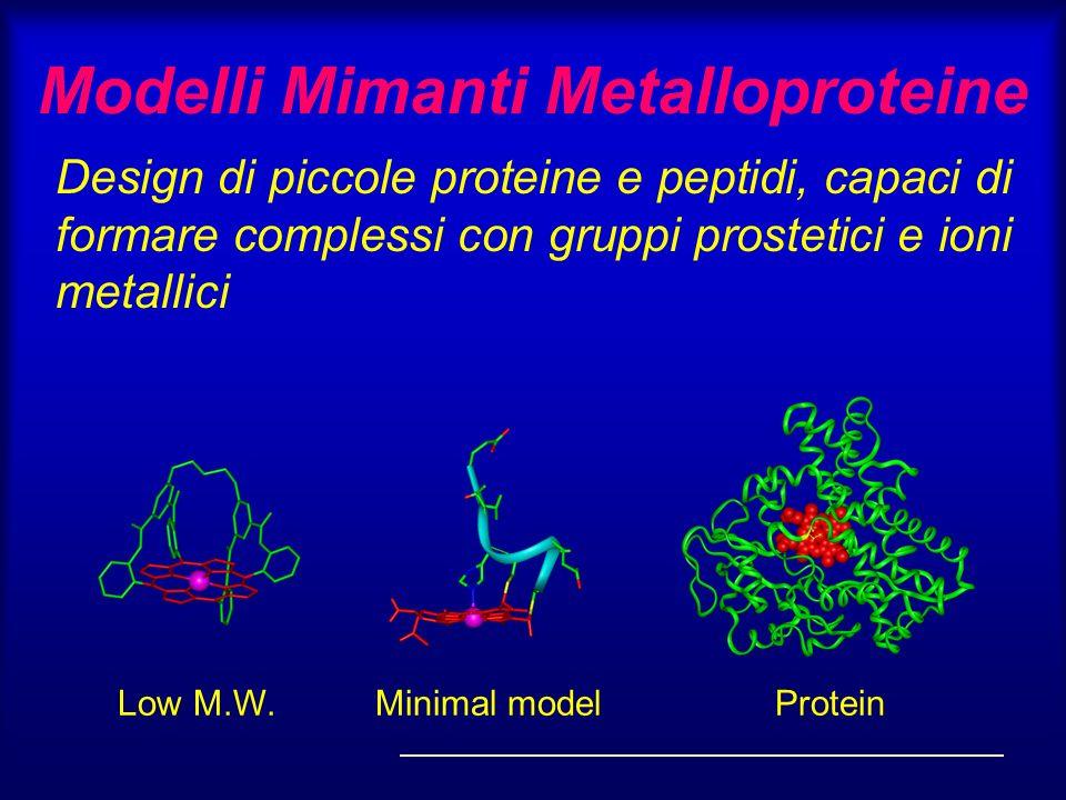 Modelli Mimanti Metalloproteine