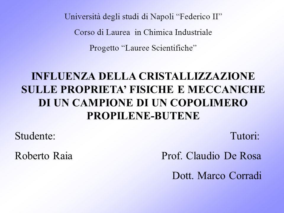 Roberto Raia Prof. Claudio De Rosa Dott. Marco Corradi