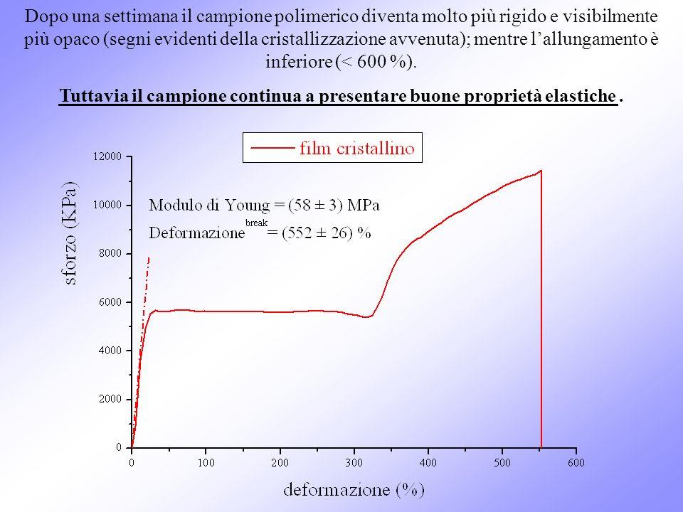 Tuttavia il campione continua a presentare buone proprietà elastiche .