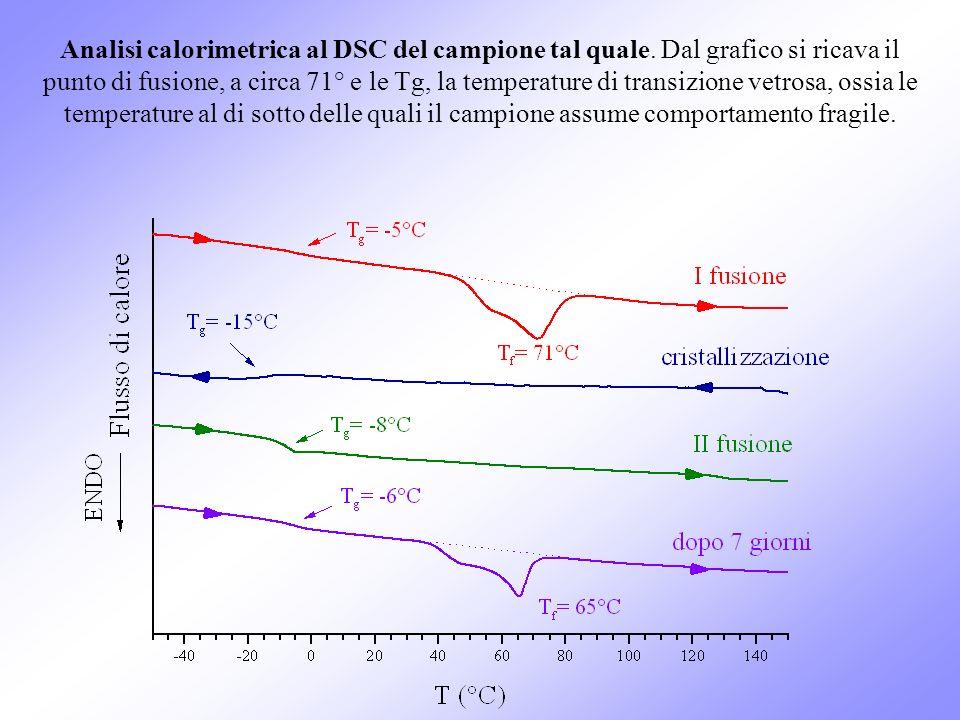 Analisi calorimetrica al DSC del campione tal quale