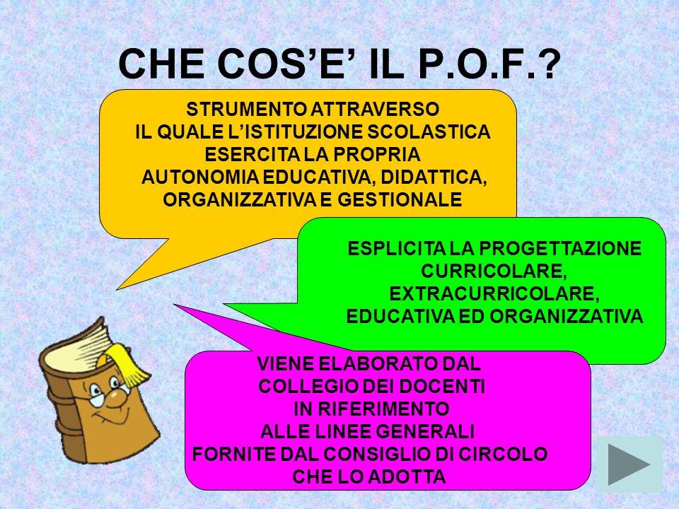 CHE COS'E' IL P.O.F. STRUMENTO ATTRAVERSO