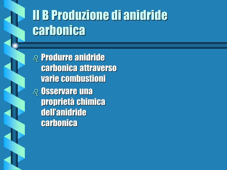 II B Produzione di anidride carbonica