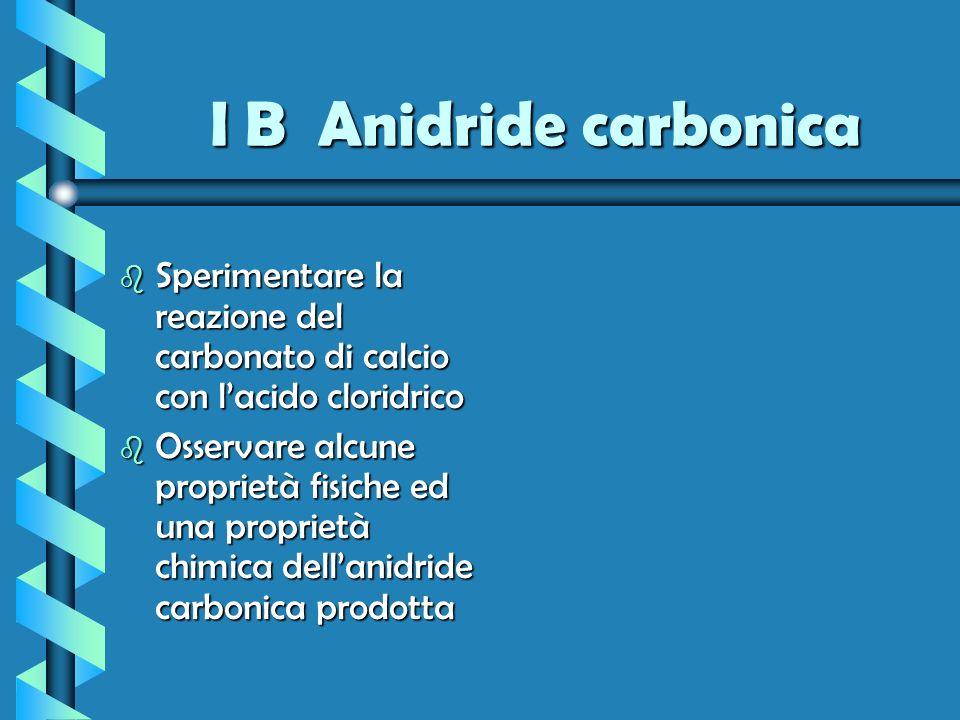 I B Anidride carbonica Sperimentare la reazione del carbonato di calcio con l'acido cloridrico.