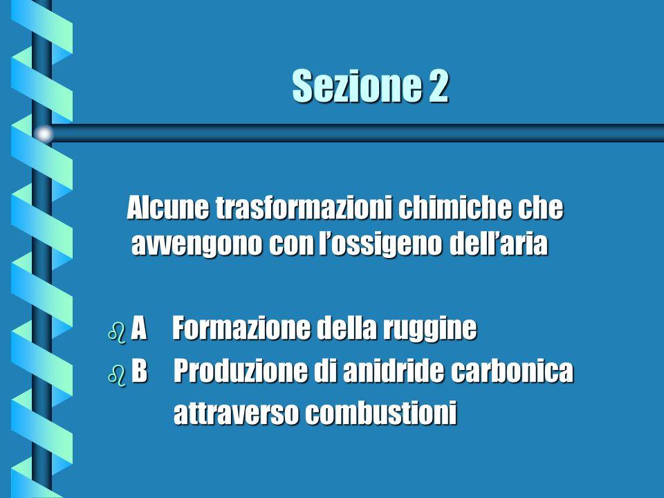 Sezione 2 Alcune trasformazioni chimiche che avvengono con l'ossigeno dell'aria. A Formazione della ruggine.
