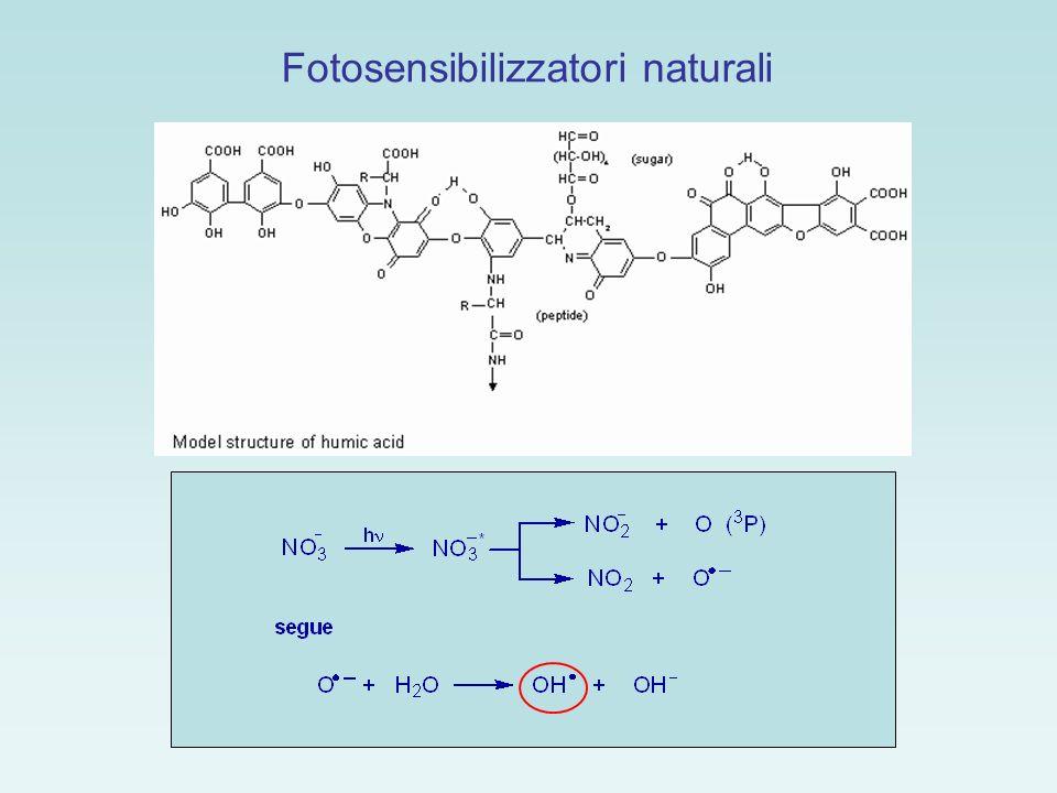 Fotosensibilizzatori naturali